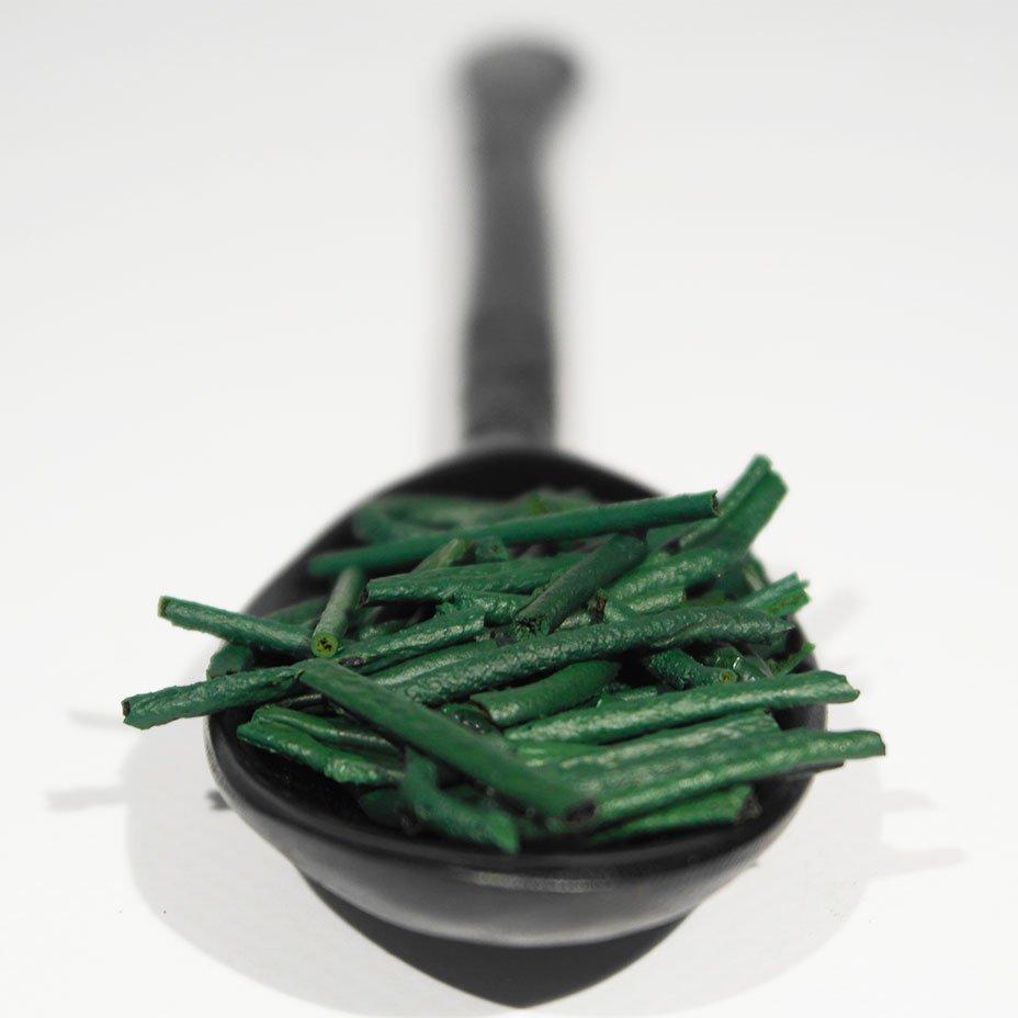 microalga spirulina proprietà nutraceutiche
