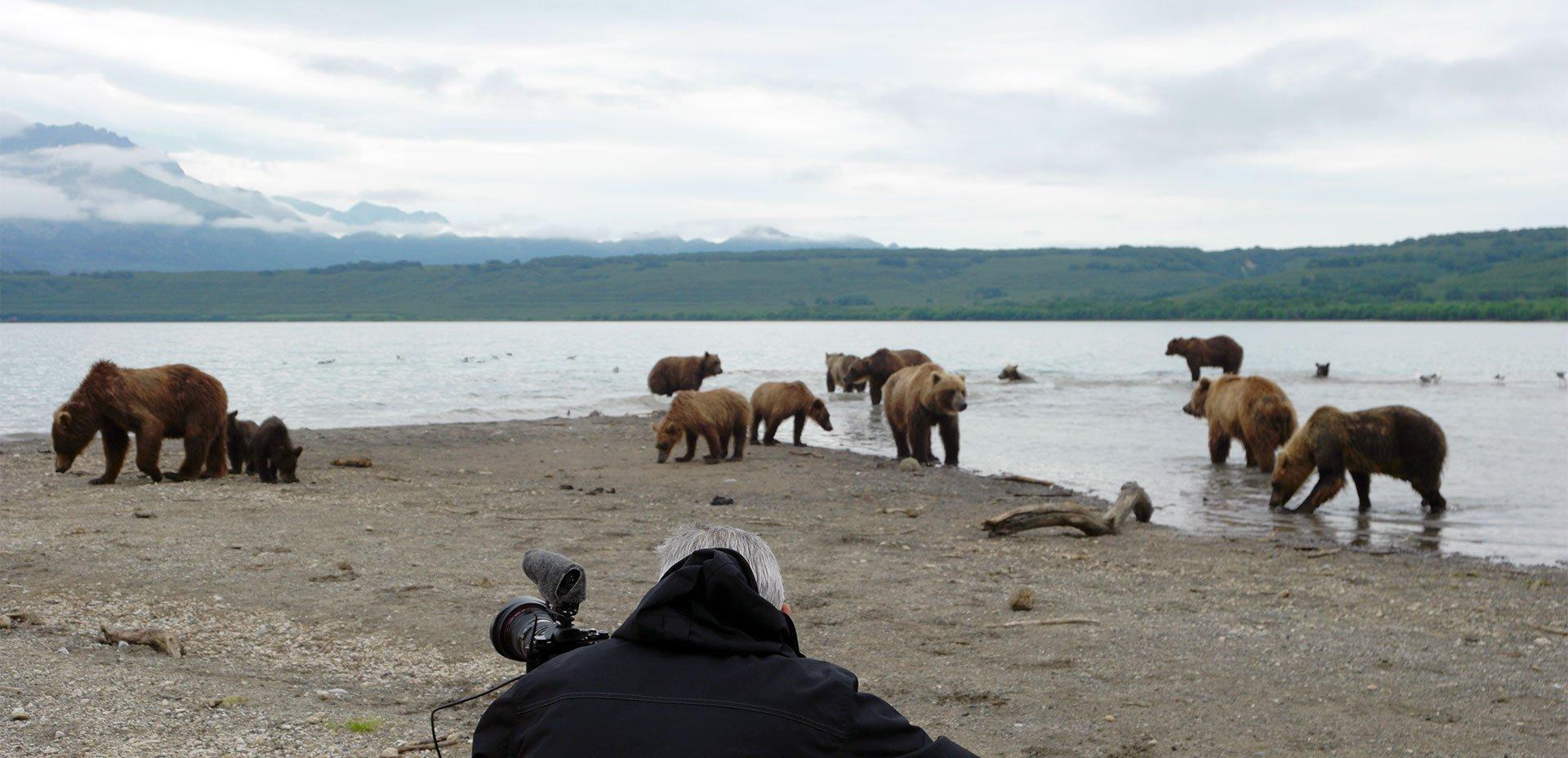 """riprese """"Gli orsi della Kamchatka. La vita comincia"""""""