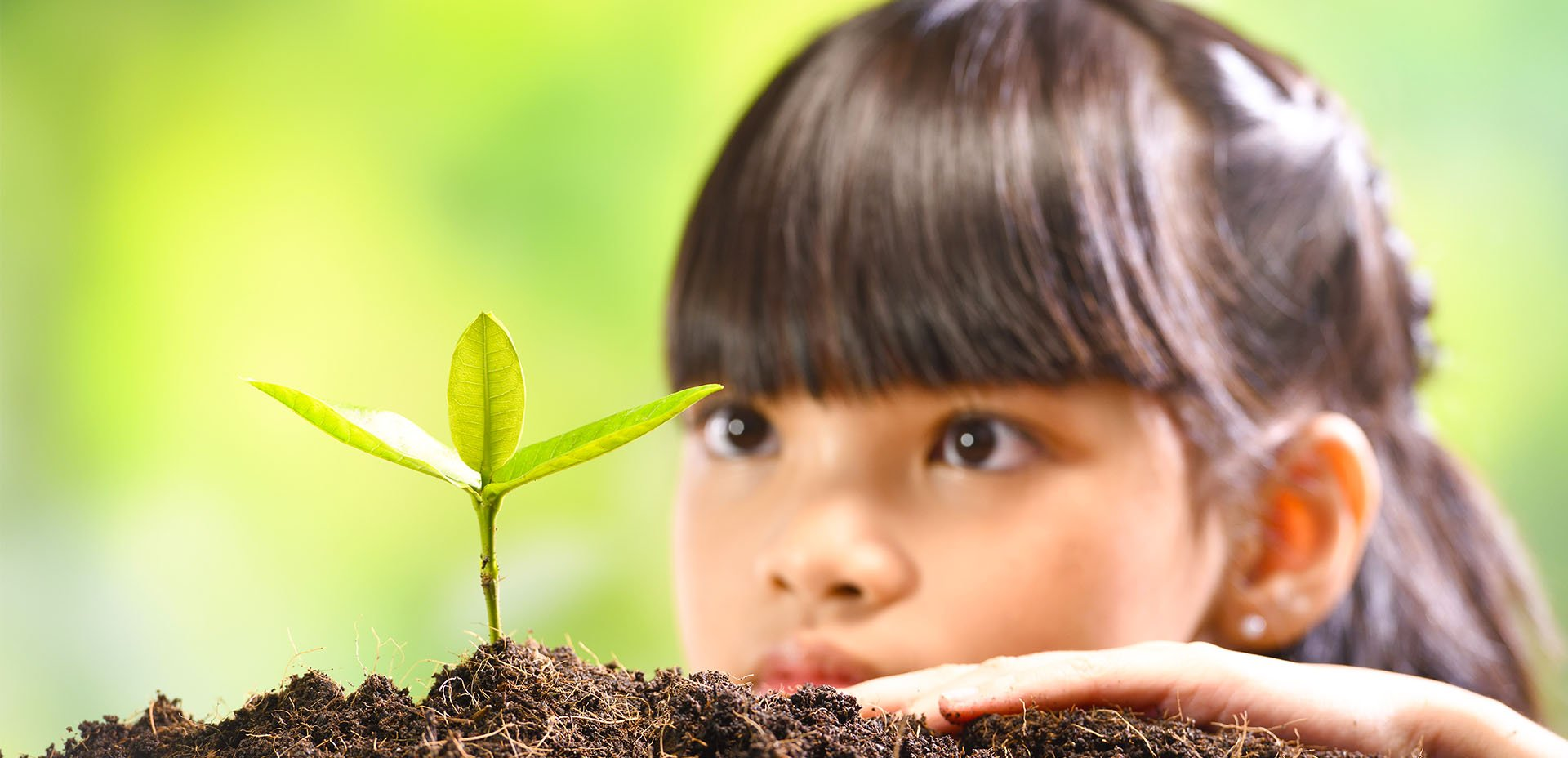 bambina osserva una pianta