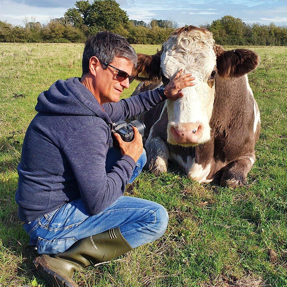 mucca salvata e Massimo Leopardi