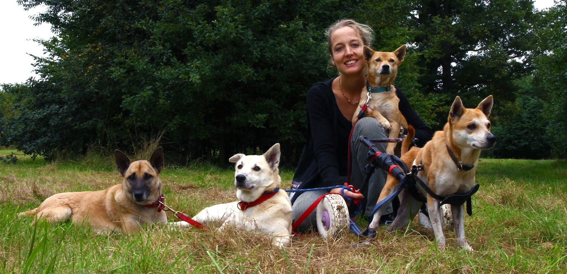 Gemma Ashford e i suoi cani a Londra