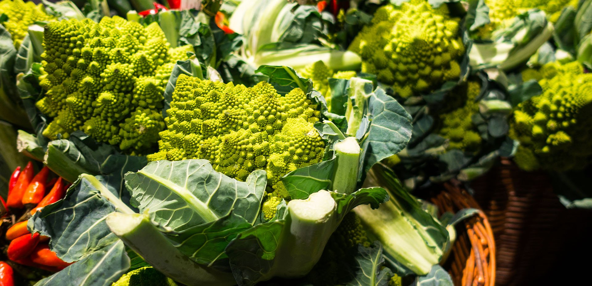 broccolo romano (romanesco)