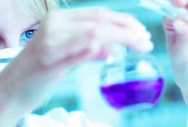 Vitamina B12: cosa dice la scienza