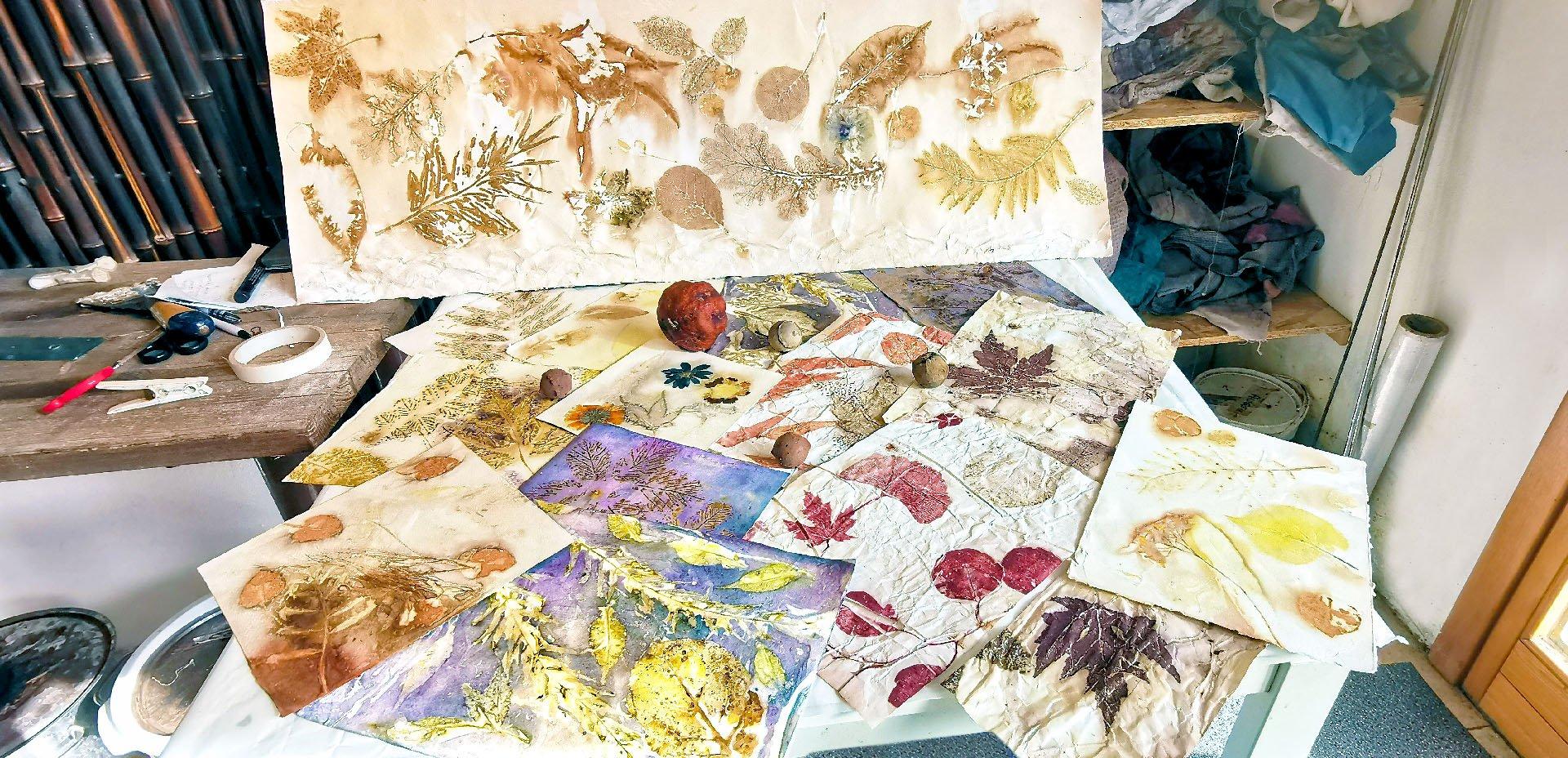 stampa botanica su carta