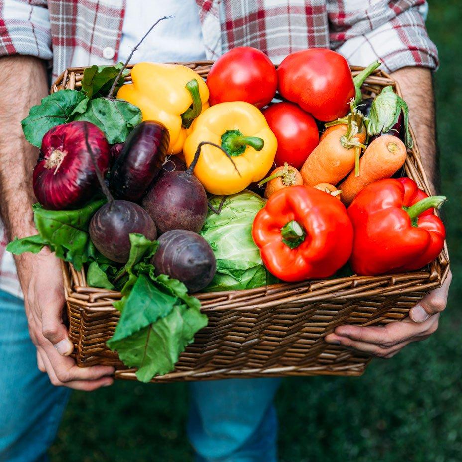 verdura di stagione estiva