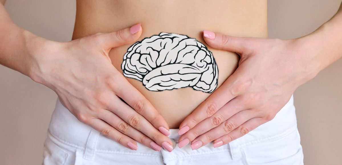 Microbiota, asse intestino-cervello