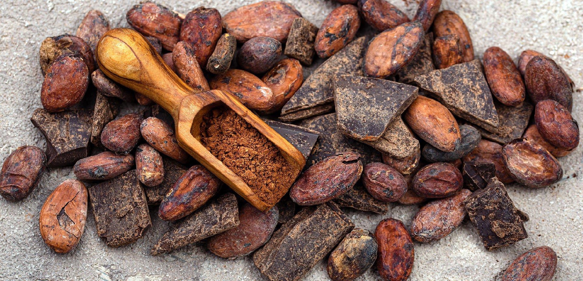 fave di cacao e cioccolato