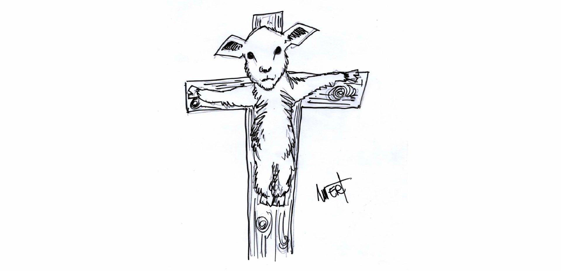 agnello di Massimo Wertmuller