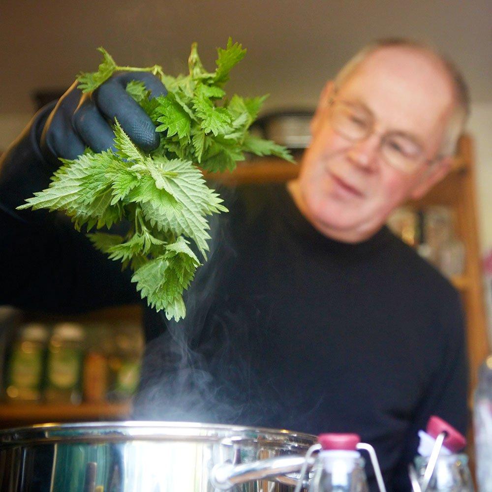 cucinare l'ortica